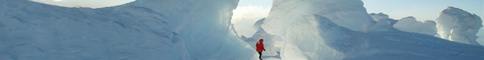 Education banner image