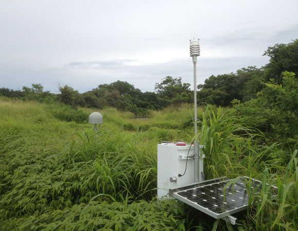COCONet GPS site CN28 on Contadora Island. Fast-growing vegetation threatens to take over the solar panels. Photo provided by Mike Fend.