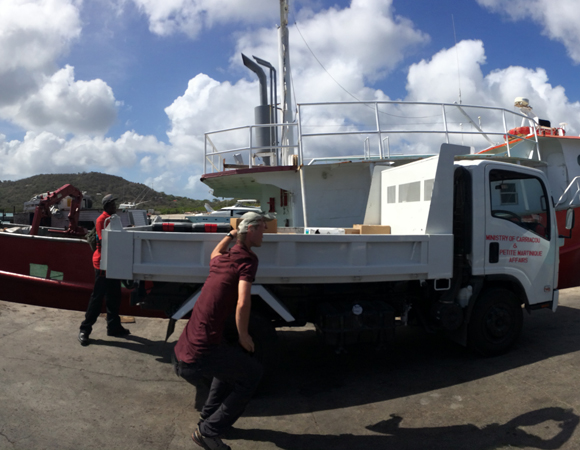 UNAVCO COCONet engineer Michael Fend (distorted in the panorama) loads installation equipment and supplies carried over by cargo ship from St. Georges onto the flatbed truck. (Photo by Jacob Sklar, UNAVCO)