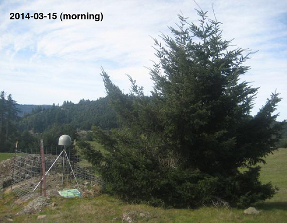 Station P158 at installation (left), ~10 years later (middle), and ~10 years+2 hours later (right).  The small tree north of the station grew into a large tree and was removed by UNAVCO engineers on March 3, 2014.  P158 is located near Ferndale, CA, just inland of the Mendocino Triple Junction.  (Photos by Adam Woolace and Todd Williams.)