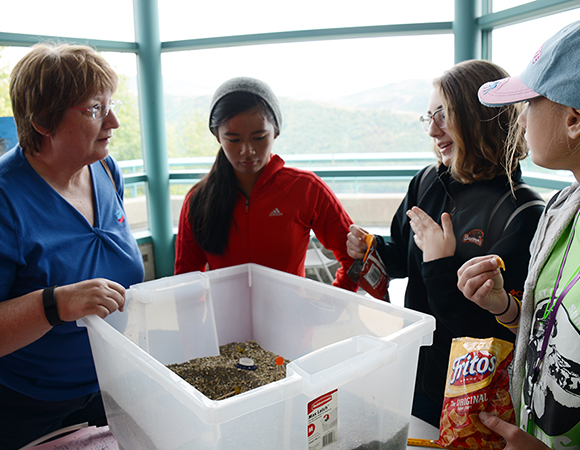 Geodesy day: GeoGirls explain the deformation sandbox to a visiting representative from one of the GeoGirls funders. (Photo/Beth Bartel, UNAVCO)
