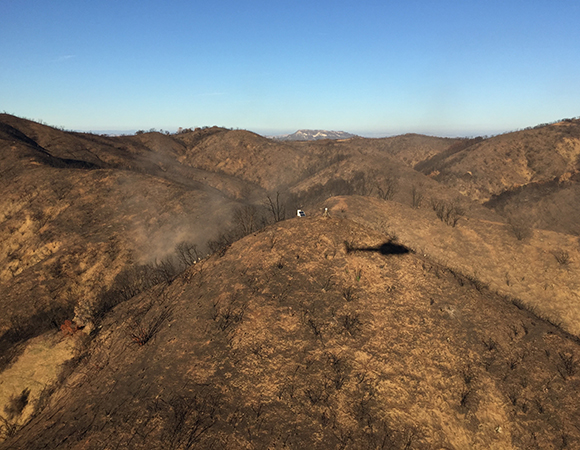 It will probably be another couple of decades before this site has to worry about a serious fire again. (Photo/PBO SW region, UNAVCO)
