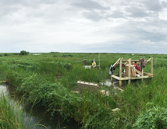 'Superstation' Myrtle Grove seen from station MGW2, the medium-depth well, drilled to 25m. The well to the left of the photo is the deep well, MGW1, anchored at the base of the unconsolidated sediments at 40m. To the right of that is the shallow well, MGW3, drilled to 10m. Don Elliott (Scripps-UCSD) works at MGW3 while Mike Steckler (LDEO-Columbia) begins installing solar panels on the newly constructed power frame on the far right. (Photo/Keith Williams, UNAVCO)