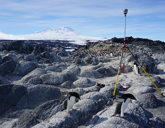 Measuring in control points with a Trimble R10 at Cape Royds, with Mount Erebus in the background. (Photo/Annie Zaino, UNAVCO)