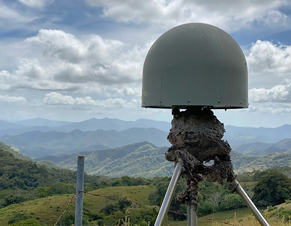 Site hazards: An old bees\' nest on the GPS monument at station EPZA. (Photo/Nicolas Bayou, UNAVCO)