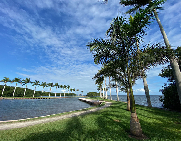 The view of Biscayne Bay from Deering Estate County Park. (Photo/John Galetzka, UNAVCO)