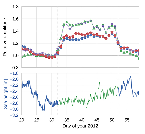 Amplitudes (top) and reflector height (bottom) retrieved from the GNSS-reflectomery signal to noise ratio data for the winter of 2012 with ice formation. The amplitude is relative to the ice-free winter of 2015 (for GPS L1, blue dot; GLOANASS L1, green trianlge; GPS L2 red hexagon and GLONASS L2, purple star) The color of the reflector height time series marks the occurrence of ice—green color indicates ice and blue indicates open water—as retrieved from the damping parameter. The figure is courtesy of the author, J. Strandberg.