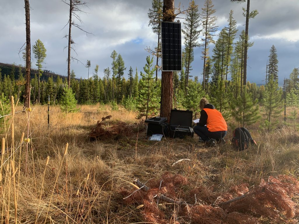 USIP intern Courtenay Duzet crouching down to work on a seismometer for her master's thesis