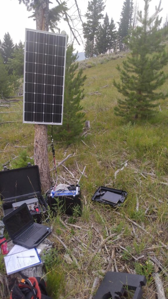 USIP intern Courtenay Duzet's data collection set-up: solar panel is connected to a tree, the seismometer is in the ground next to the tree, and there is an open laptop on the ground.
